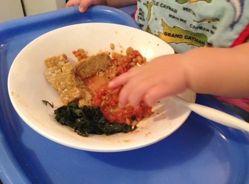 Baby Led Weaning 9 Months Old