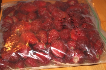 Fresh Strawberries Frozen for Fall