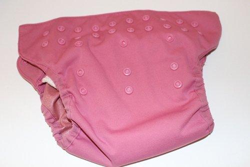 Bum Genius Organic Elemental All-in-One Cloth Diaper