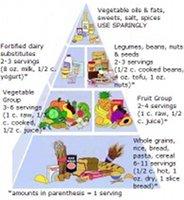 Small Vegan Food Pyramid