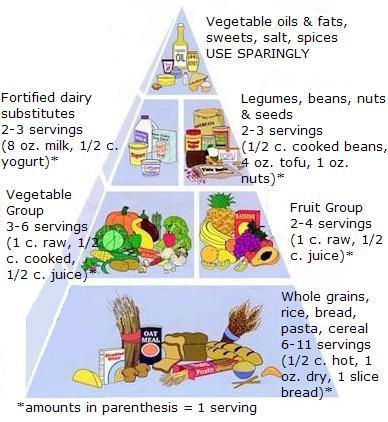Vegan Food Pyramid from Vegan Nutritionista